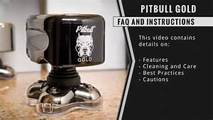 The Best Mens Electric Shaver Skull Shaver Pitbull Gold