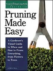 pruning  easy  gardeners visual guide      prune   flowers