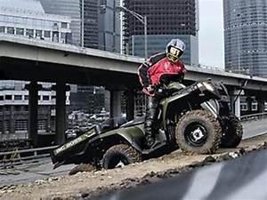 Polaris Atv 2012-2013 Sportsman 800 4x4 6x6 Bb Repair Manual