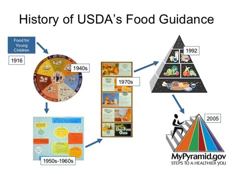the history of cuisine usda food pyramid history search engine at search com