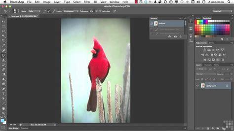 adobe photoshop cs6 tutorial color replacement