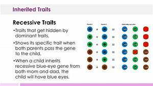 INHERITED TRAITS LESSON PLAN – A COMPLETE SCIENCE LESSON ...