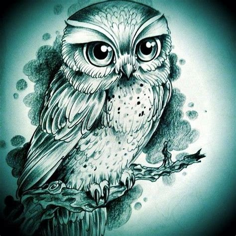Information About Cute Owl Sketch Tumblr Yousense Info