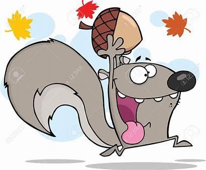 Squirrel Cartoon Crazy Clipart Gray Running Grey