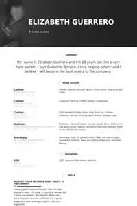 curriculum vitae for restaurant cashier caissier exemple de cv base de donn 233 es des cv de visualcv
