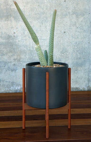 case study planter  stand homage