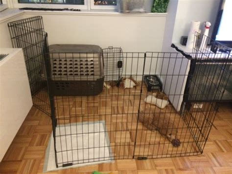 2 Bedroom Apartment Kijiji