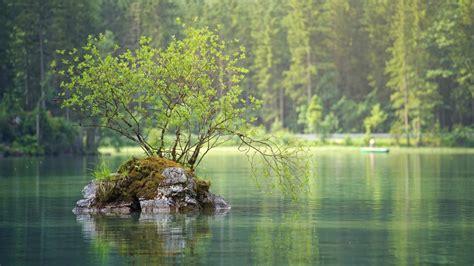 森林湖绿色护眼4k壁纸-壁纸下载-www.pp3.cn