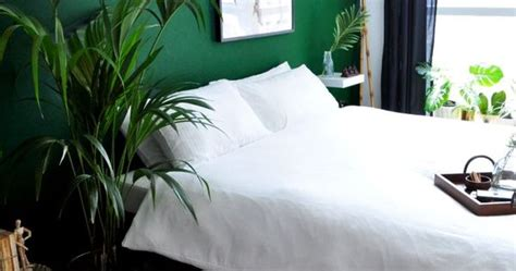 26 Awesome Green Bedroom Ideas  Green Bedroom Design