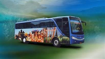 Bus Wallpapers Background Malam Pariwisata Web Travel
