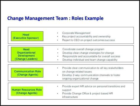 chronic care management template  template