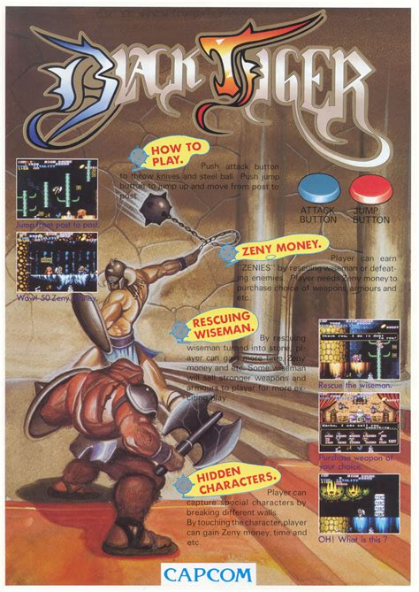 The Arcade Flyer Archive Video Game Flyers Black Tiger