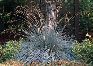 Light Construction Beechwood Landscape Architecture And Construction Blue