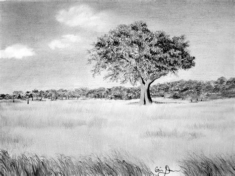 giclee prints western equine pets  landscape
