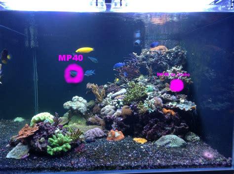 ou placer un aquarium dootdadoo id 233 es de conception sont int 233 ressants 224 votre d 233 cor