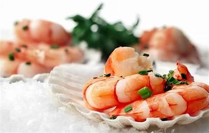 Shrimp Seafood Sink Bow вконтакте Telegram
