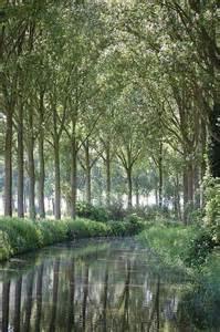 Belgium Nature