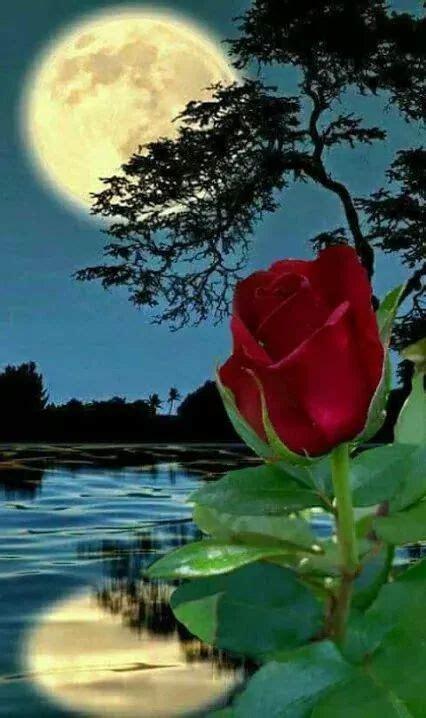 hermosa noche comunidad paisaje de fantasia hermosos