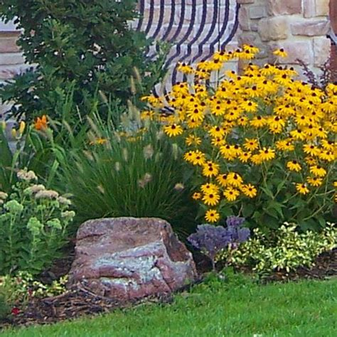 small perennial garden design 17 best images about fence line landscape on pinterest shrubs dry creek bed and shades