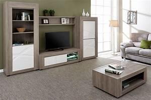 Bibliothèque Moderne Design : meuble biblioth que blanc et bois 1 porte pour salon moderne ~ Teatrodelosmanantiales.com Idées de Décoration