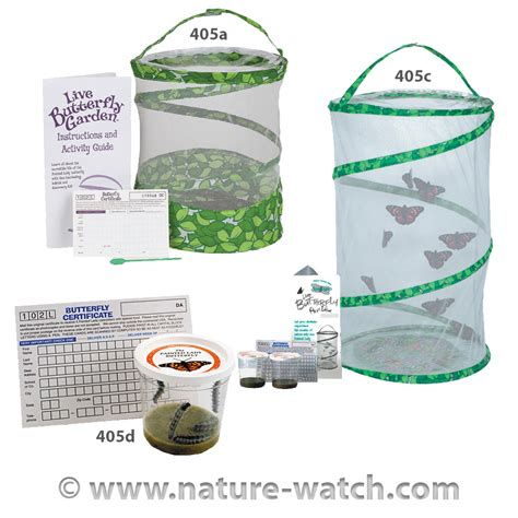 butterfly garden kit butterfly garden kits pavilions teaching kit for