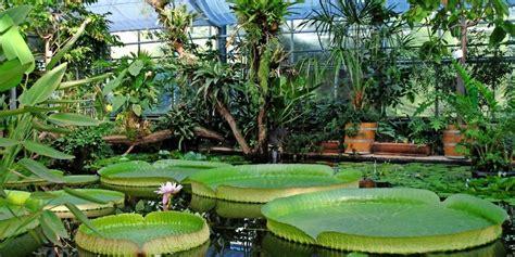 Botanischer Garten by Sommerfest Im Botanischen Garten