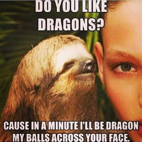 Dragon Sloth Meme - do you like dragons pictures photos and images for facebook tumblr pinterest and twitter