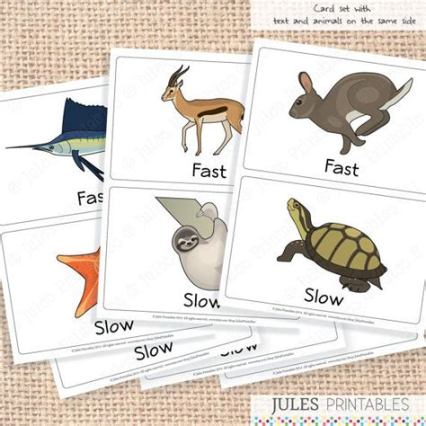 Fast And Slow Animals Cards Opposite Flashcards By Julesprintables, $600  Art Prints