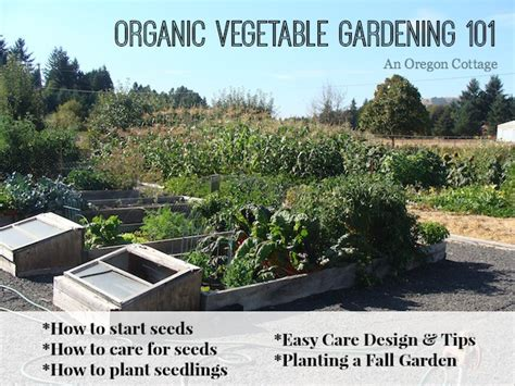 How To Start An Organic Vegetable Garden In Your Backyard by Organic Vegetable Gardening 101 An Oregon Cottage