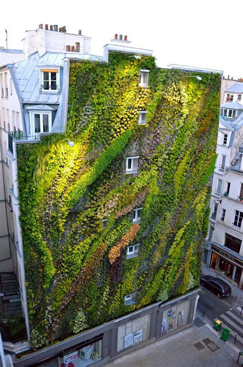 Vertical Gardens by Revealing A Stunning Living Wall Blanc S Work For