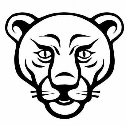Lion Animal Face Faces Outline Drawing Cougar