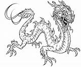 Coloring Dragon Pages Detailed Print Adults Popular sketch template