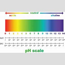The More Alkaline The Better? Is A Ph Of 95 Healthier