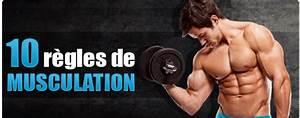 Guide Pour Prendre Du Muscle