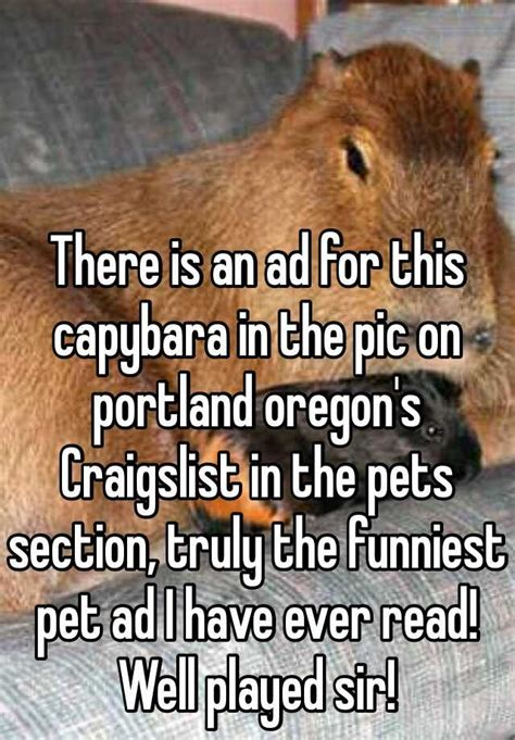 ad   capybara   pic  portland