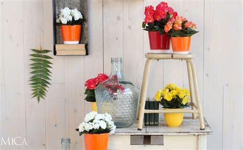 dekorieren mit kunstblumen dekorieren mit kunstpflanzen informationen und tipps hornbach