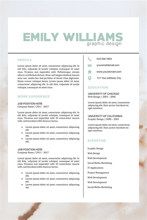 Simple Cv Layout by Creative Color Resume Resume Template Instant