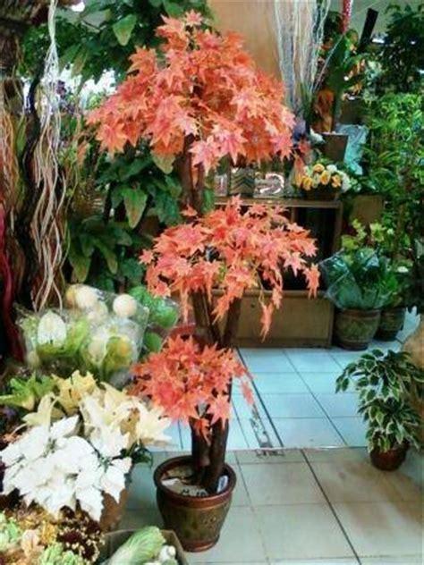dinomarket pasardino pohon hiaspohon imitasi pohon