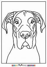 Coloring Dane Printable Getcolorings Getdrawings sketch template