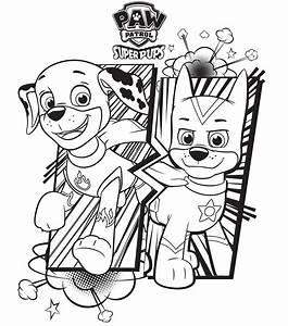 Dibujo Para Colorear Patrulla Canina Ryder Y Chase