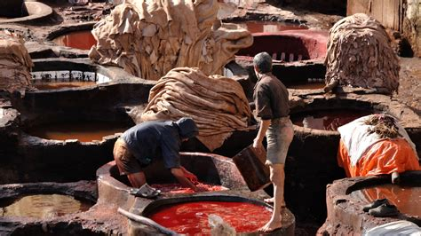 leather  slowly killing  people  places