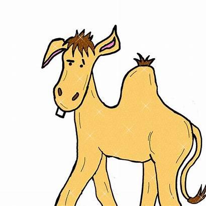 Animated Camel Clipart Gifs Graphics Cartoon Glitter