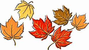 October leaves clipart - Clipground