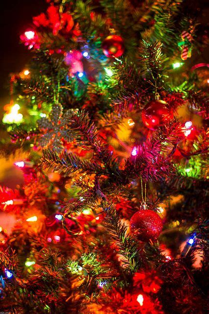 Top #30+ Christmas Lights Wallpaper