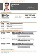 Exemple De Mise En Page De Cv by Exemple De Cv Mise En Page