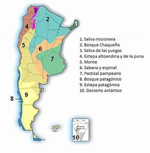 Biomas de argentina Ciencias Naturales Campus Virtual ORT