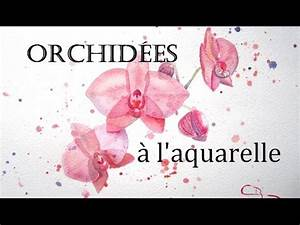 Comment Soigner Une Orchidée : comment peindre une orchid e aquarelle youtube ~ Farleysfitness.com Idées de Décoration