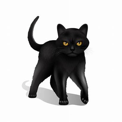 Cat Vector Realistic Background Illustration Cartoon Clipart