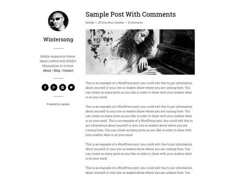 80+ Best Wordpress Personal Blog Themes 2018
