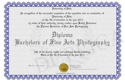 Diplomabachelorsoffineartsphotography